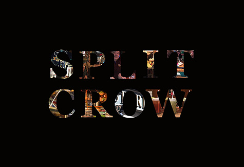 splitcrow-graphic